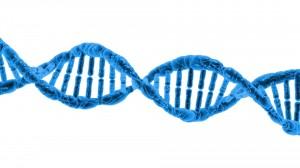 thought leadership en DNA