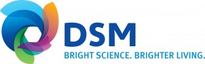 DSM Coating Resins -referentie Marketing Accent