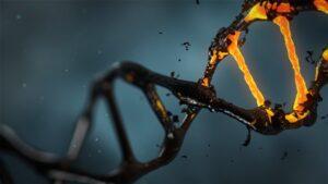 bedrijfsDNA ontdekken
