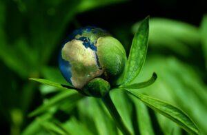 marketingkansen duurzaamheid